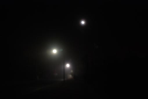 Foggy streetscape 1
