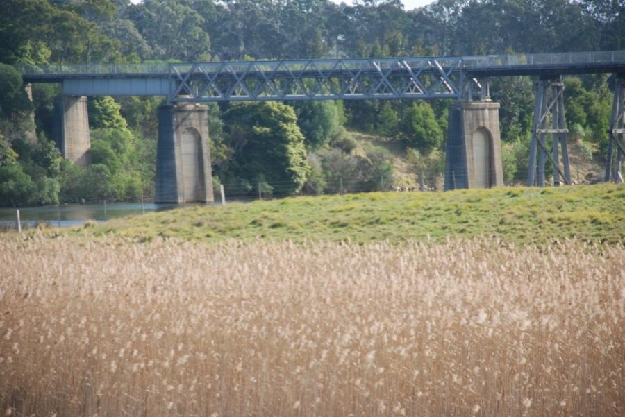 Nicholson River Orbost2