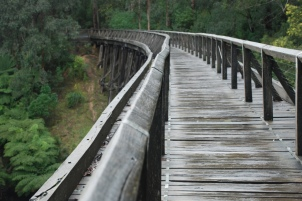 Warragul to Noojee3